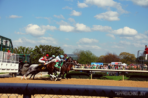 Oaklawn_horse_races_hot_springs_AR